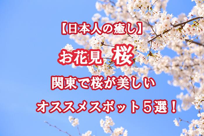 2019年お花見はどこいく?関東で桜が美しいオススメスポット5選