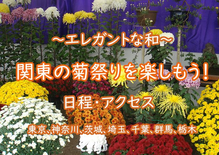 関東の菊祭りを楽しもう!2018年の日程・アクセスもチェック!