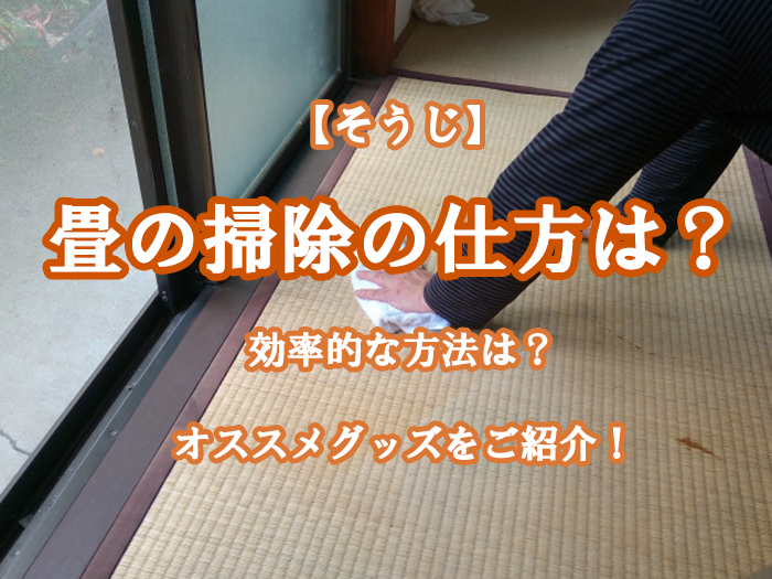 大掃除で畳の掃除の仕方は?効率的な方法やオススメグッズをご紹介!