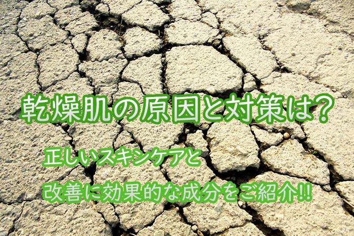 乾燥肌の原因と対策は?正しいスキンケアと改善に効果的な成分を紹介