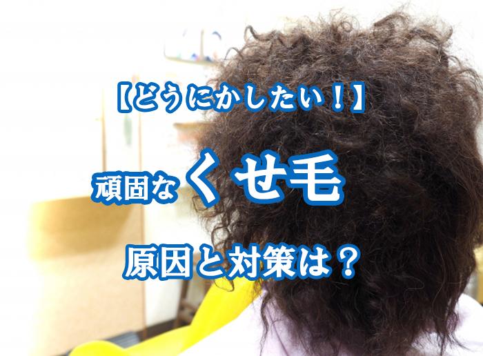 くせ毛の原因と対策は?おすすめドライヤーをご紹介