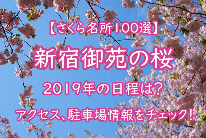 『新宿御苑の桜』2019年の日程は?アクセス情報をチェック!