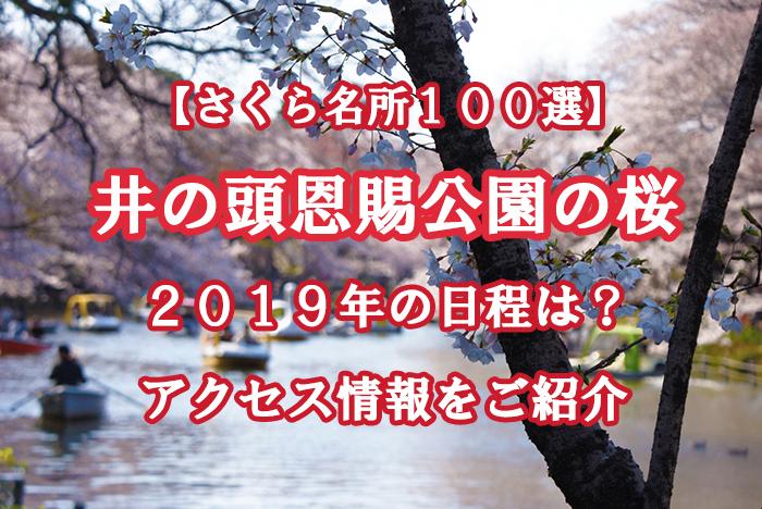 『井の頭恩賜公園の桜』2019年の日程、アクセス情報をチェック!