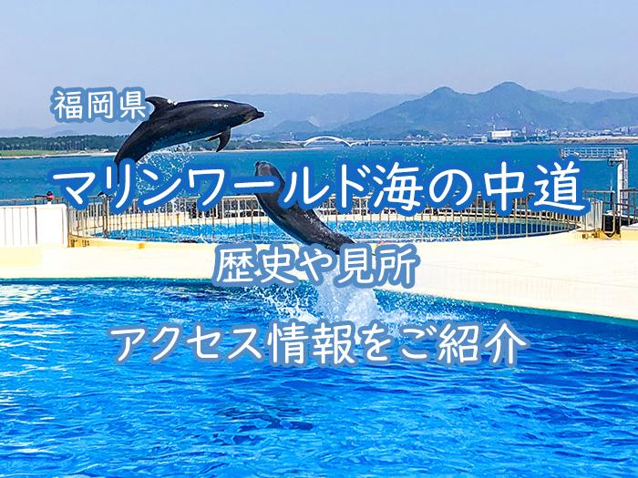 【福岡県】マリンワールド海の中道の歴史や見所、アクセスをご紹介