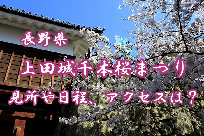 【長野】上田城千本桜まつりとは?見所や日程、アクセス情報を紹介!