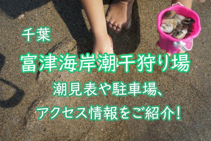 【千葉】富津海岸潮干狩り場とは?潮見表や駐車場、アクセス情報をご紹介!