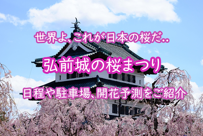 弘前城の桜まつり2020の日程や駐車場、開花予測をご紹介します