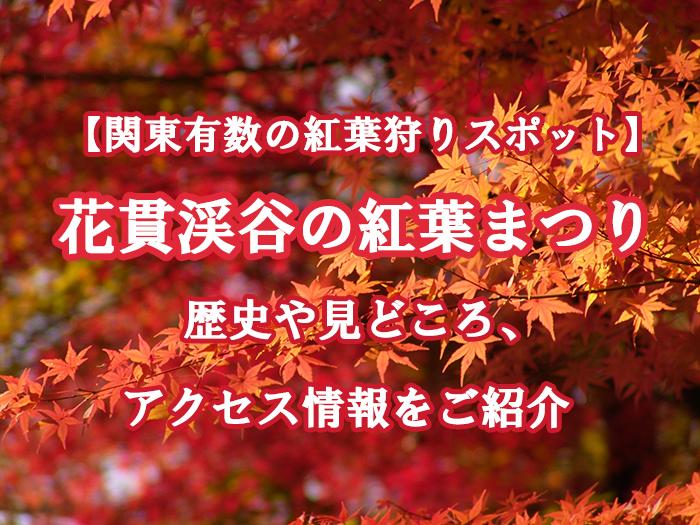 花貫渓谷の紅葉まつりとは?歴史や見どころ、アクセス情報をご紹介!