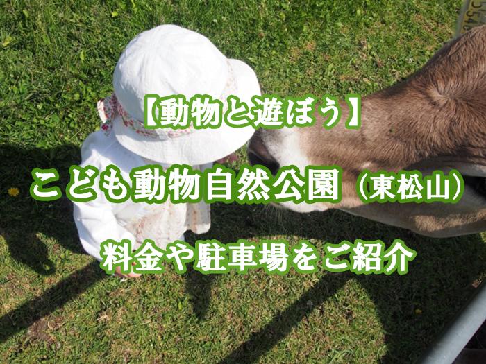 こども動物自然公園(東松山)の楽しみ方は?料金や駐車場をご紹介