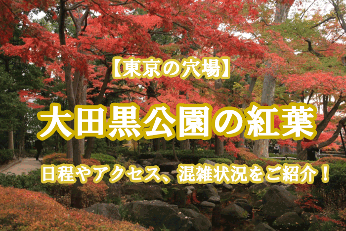 大田黒公園の紅葉を観に行こう!日程やアクセス、混雑状況をご紹介!