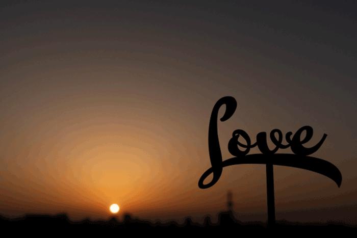 恋愛 人間 不信