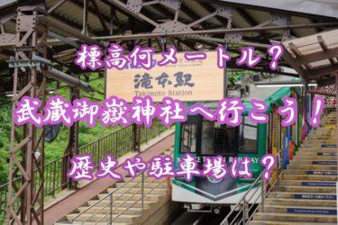 武蔵御嶽神社へ行こう!標高何メートルにある?歴史や駐車場も