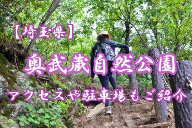 【埼玉県】奥武蔵自然公園に行こう!アクセスや駐車場もご紹介!